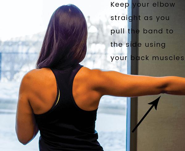 posterior deltoid strengthener