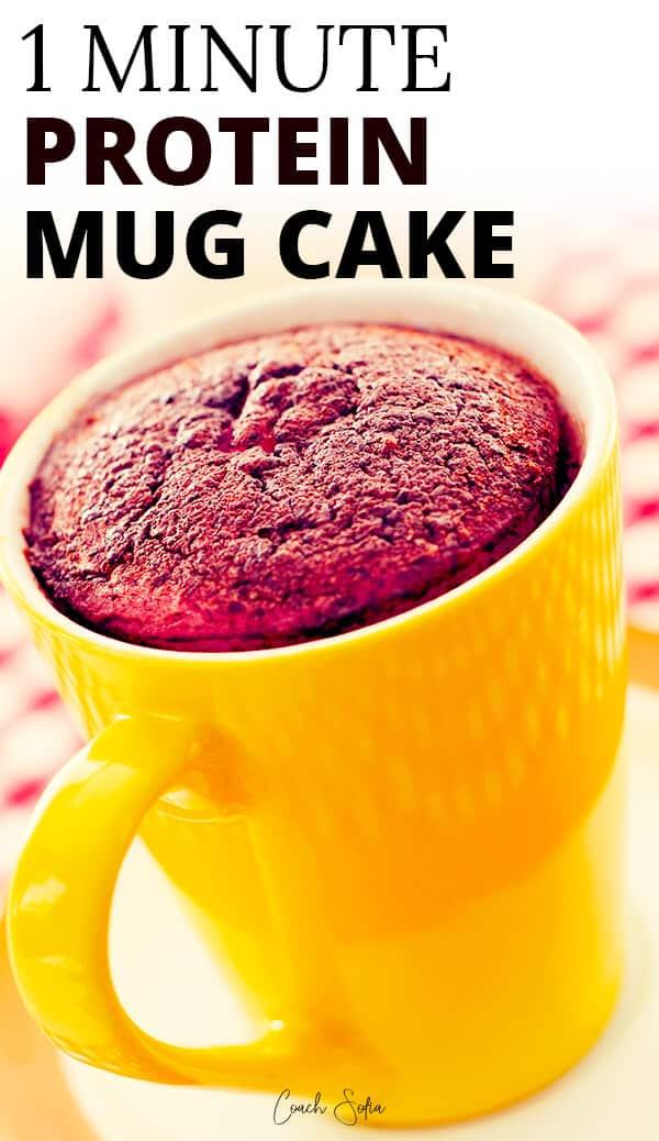 1 Minute Whey Protein Mug Cake No Flour Coach Sofia Fitness