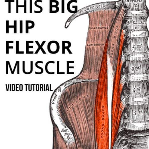 psoas muscle pain relief